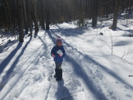 Casalis State Forest, Hike it Baby Monadnock, First Day of Spring