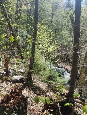 Pack Monadnock Miller State Park Peterborough NH Raymond Trail