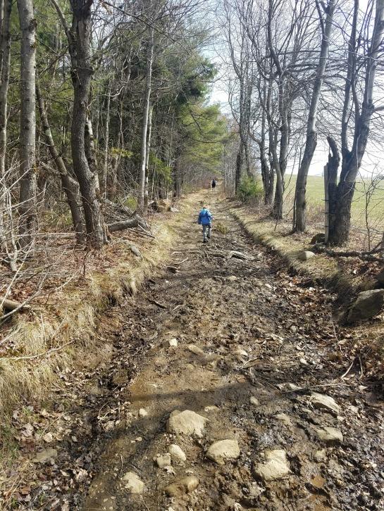 Pichter Trail
